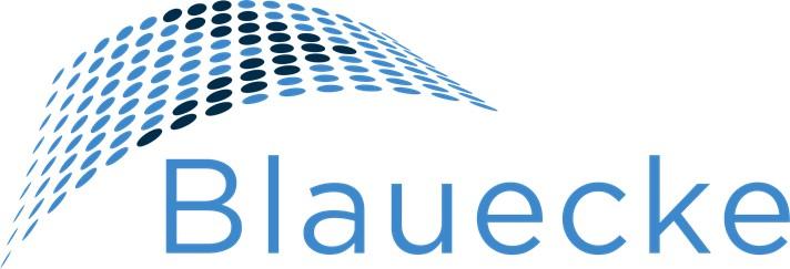 Blauecke - Consultoria em Gestão